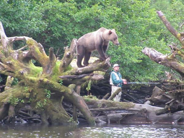 <b>Submitted By:</b> GARY B. HANSEN <b>From:</b> TRAVERSE CITY <b>Description:</b> FISHING WITH A BEAR PART '' B''