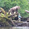 <b>Submitted By:</b> GARY B. HANSEN <b>From:</b> TRAVERSE CITY <b>Description:</b> FISHING WITH A BEAR PART '' B''