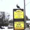 <b>Submitted By:</b> Ty Phillips <b>From:</b> Acme <b>Description:</b> Turkey gets view of US 31 at Pioneer Quick Lube 5940 US 31 N