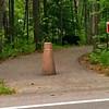 <b>Submitted By:</b> Sean Nowicki <b>From:</b> Traverse City <b>Description:</b> A bear crossing the road at Interlochen School. 6/15/10