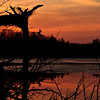 <b>Submitted By:</b> Andrew C. Boyd <b>From:</b> Interlochen <b>Description:</b> Ellise Lake Sunset.Interlochen,MI mid March 2012
