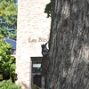 <b>Submitted By:</b> Kayla Kester <b>From:</b> Traverse City <b>Description:</b> Squirrel at NMC.
