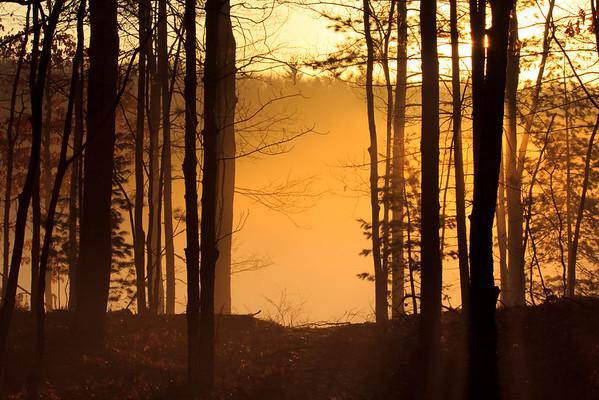<b>Submitted By:</b> Andrew C. Boyd <b>From:</b> Interlochen <b>Description:</b> Bullhead Lake early morning fog near Williamsburg,MI