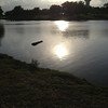 Meadowlake Park in June 2014<br /> <br /> Photographer's Name: Violet Hassler<br /> Photographer's City and State: Enid, OK