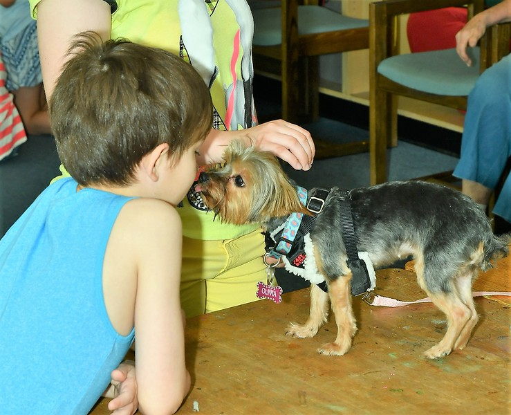 John Bowen and Olivia were checking each other out at the Reading to the Animals event at the Fitchburg Library on Saturday.<br /> Sentinel & Enterprise / Jim Fay
