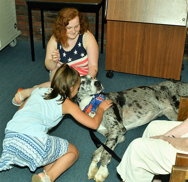Great Dane, Fiona seems to be falling asleep while being read to by Lexi Bowen. Mackenzie Mobley ,who is in the Gateway Program at MWCC looks on.<br /> Sentinel & Enterprise / Jim Fay