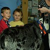 Aiden and Joshua Renquinha pet Fiona, a 9 year old Great Dane.<br /> Sentinel & Enterprise / Jim Fay