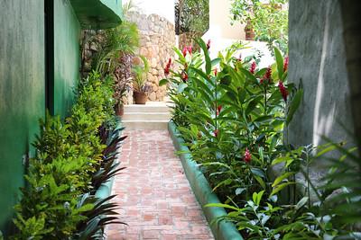 Casa_Rio_Zarquito_Sayulita_Mexico_Dorsett_Photography_(9)