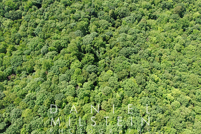 957 Rock Rimmon Rd land aerial 12