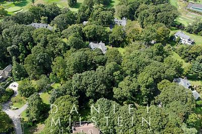 12 Dogwood Ln aerial 04