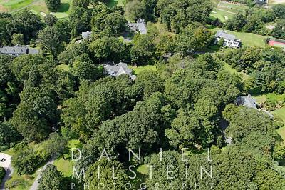 12 Dogwood Ln aerial 14