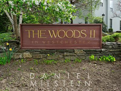 8-4 Woods Brooke Ln 01