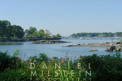 1130 Cove Island 02