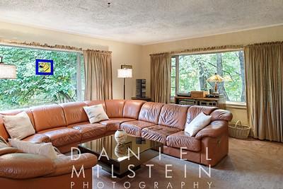 8 Spring Hill Rd 15 - living room