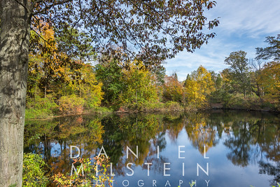 8 Golden Pond Rd 07
