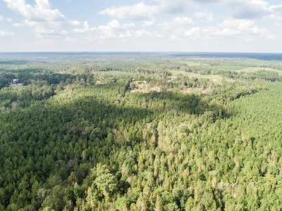 Town Creek Trophy Reserve