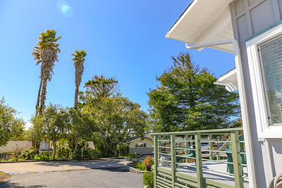web 1173 PINEWOOD_Home for Sale_Cambria_CA-8