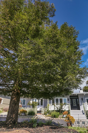 web 1173 PINEWOOD_Home for Sale_Cambria_CA-30