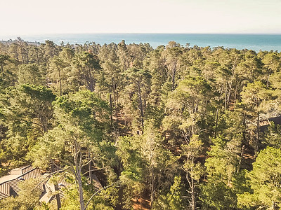 685 Evelyn Court_Home for Sale_Cambria_Drone-8