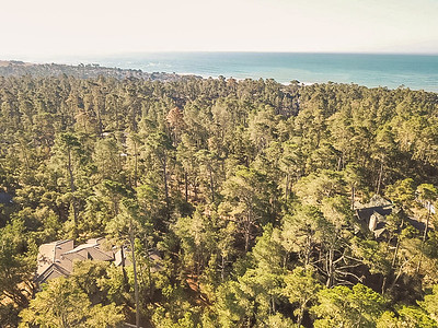 685 Evelyn Court_Home for Sale_Cambria_Drone-10