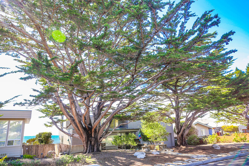 4849 Windsor_Vacation Rental_Large Home_Cambria_CA_Breen Realty-1e