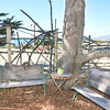 Beach House for Rent at Centrally Grown_Cambria_Vacation Rental-7471