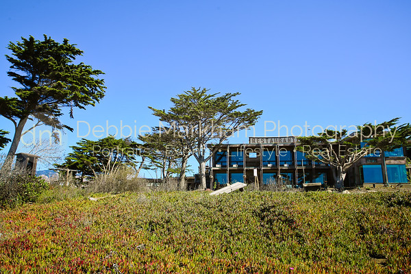 Beach House at Centrally Grown_Cambria_Ca_House for Rent-7276