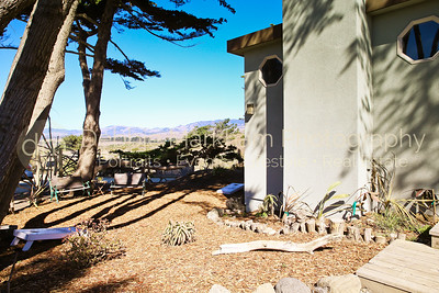 Beach House at Centrally Grown_Cambria_Ca_House for Rent-7285