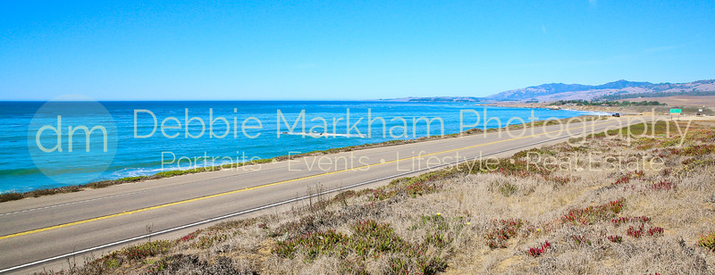 Beach House at Centrally Grown_Cambria_Ca_House for Rent-7273