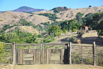 Red Mountatin_Cambria_Ca_House for Rent-7510