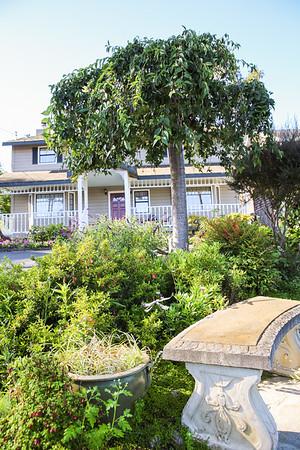 2976 Burton Drive_Home for Sale_Cambria_CA-9742