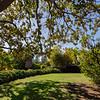 2053 Hays ~ San Luis Obispo_006