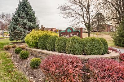 346 Carmel Woods Drive