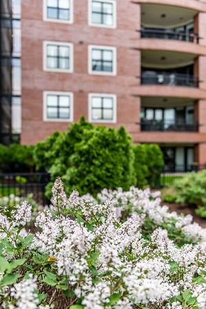 Crescent Condos Terrace Garden