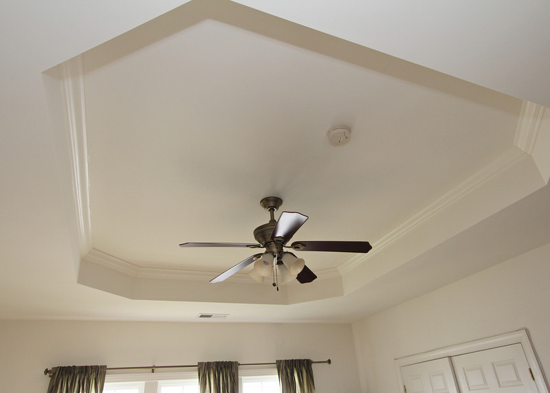 Master Bedroom features a trey ceiling with fan.