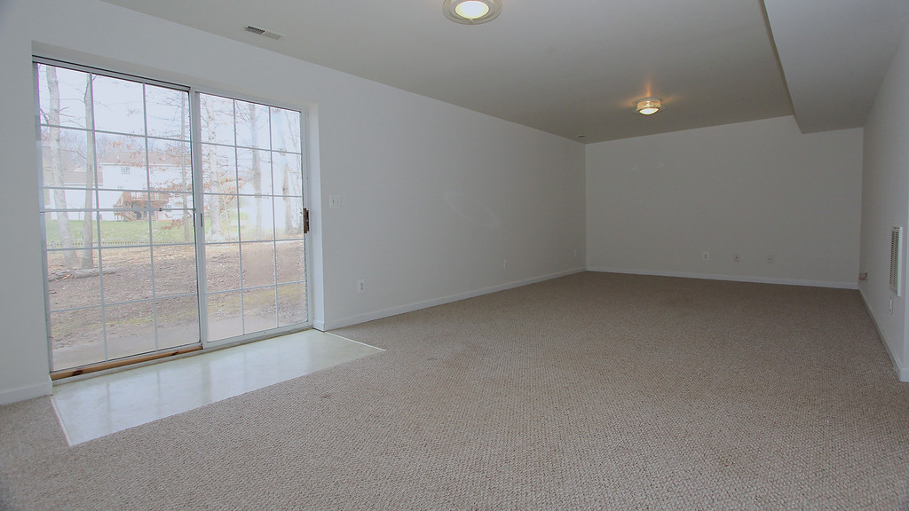 Lower level rec room w/walk out to back yard