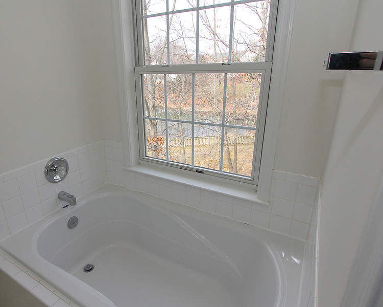 Master bath tub w/view