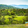 Indian Valley Ranch_016