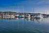 Gig Harbor Marina Reflections