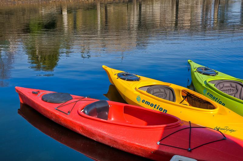 Gig Harbor Color Splash