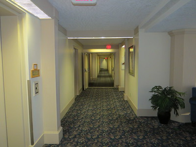 First floor hallway at 3931 Shelbourne Street