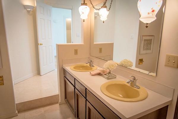 master dual sinks