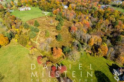 14 Conyers Farm Dr aerial 04