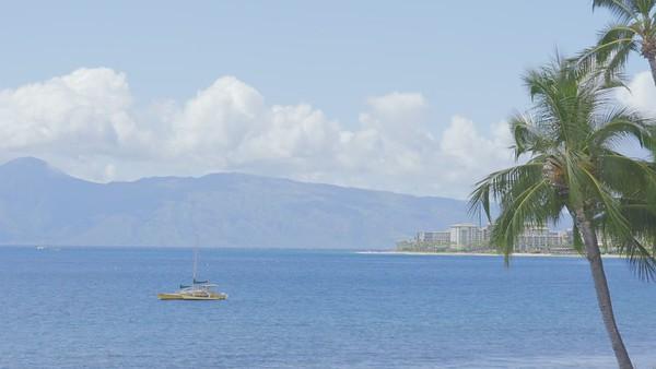 1403 Front Street #401 Lahaina HI | Lahaina Roads | Maui Real Estate for Sale | MLS