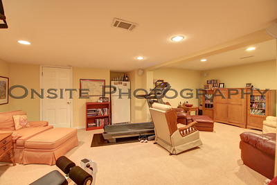 Lower Level Family Room1