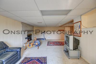 Lower Level Family Room1