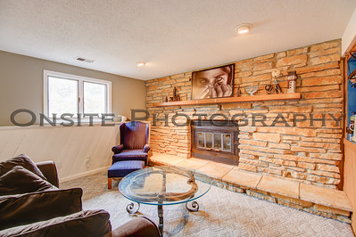 Lower Level Family Room Fireplace