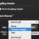 "<center><b>Custom header or banner</b></center> For your customized banner, it's easiest to use Smugmug's Easy Customizer. You can find it in your Control Panel. Open 'Header', which will give you a few options. First of all, deselect 'Show SmugMug Header'.  If you are totally incapable of operating graphic software like Photoshop or Draw, you're better off choosing 'Text' as your custom banner.  If you think you can handle creating a GIF image as your banner, or you have one already, you can use that and upload it from your computer. Why GIF? Because GIF can handle transparency, which means that your company names looks like it's a part of the design instead of a weird-colored square at the top. So, remember to leave your background transparent.  Try to keep the banner from taking too much space vertically. It leaves more room for your automatically stretching slideshow and your visitors don't have to scroll down to see your images.  Also, if you already have some other marketing material, like business cards or flyers, try to maintain the same design on your banner so people know they're dealing with the same company. Branding is important. They get confused if they can't find the same elements that were in the flyer you handed them. The banner is the easiest way to show that essential connection. Play around with this until you are truly happy with how it looks.  When you're finished, open 'Footer' and change your Smugmug footer to a tiny one.   The tiny picture that sits next to your URL is called a favicon and by default looks like Smugmug's smiley. Ours is a camera. To get your own, you can upload a new GIF or PNG in ""Browser"" tab - transparent background is important again! Remember to save your settings."