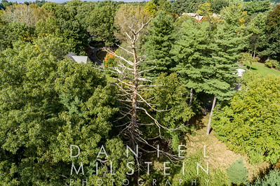 Castle Rd property 30