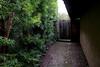 40 Pine Terrace 2-4-10_-122
